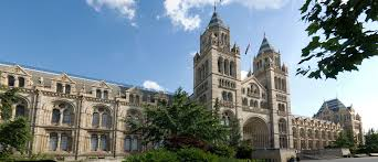 Explore natural history museum with a digital tour!